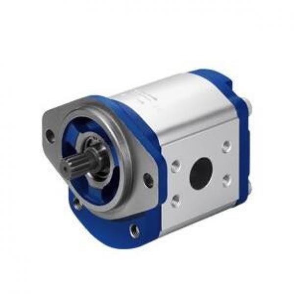 Rexroth piston pump A11VLO190LRDU2+A11VLO190LRDU2 #1 image
