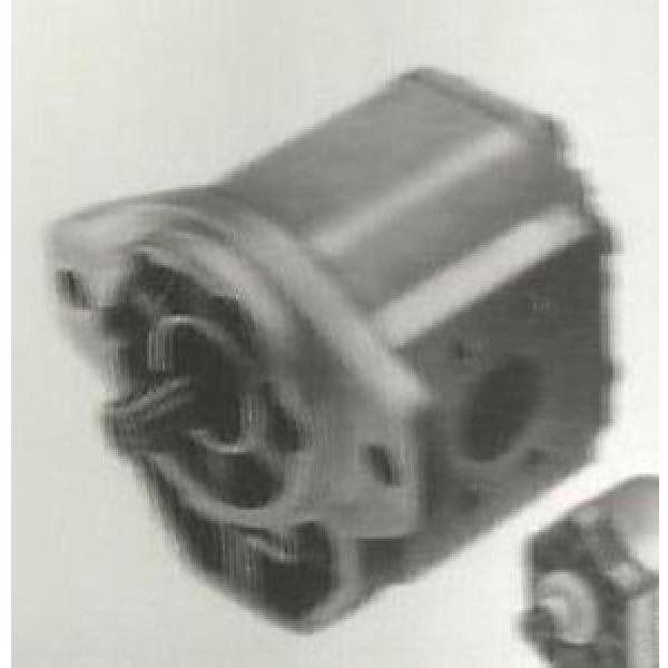 CPB-1227 Sundstrand Sauer Open Gear Pump #1 image